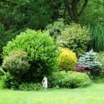 Three Ivy Cross Garden